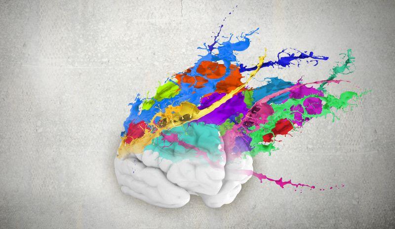 Creative Brain by Sergey Nivens